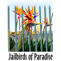 jailbirds design image